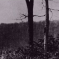 Lake Tiorati UFO Sighting In 1966