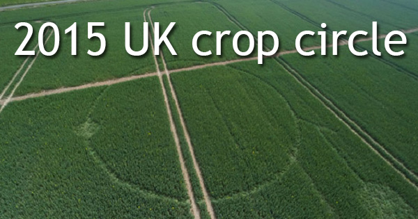 First uk 2015 crop circles barbury hill wiltshire latest ufo crop circle 2015 publicscrutiny Choice Image