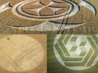 latest-crop-circles