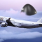 Giant UFO Follows Japanese Airliner