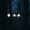 "Michigan: ""Orbs of bright light in woods behind house. Observed them almost every night for last 2 months"""